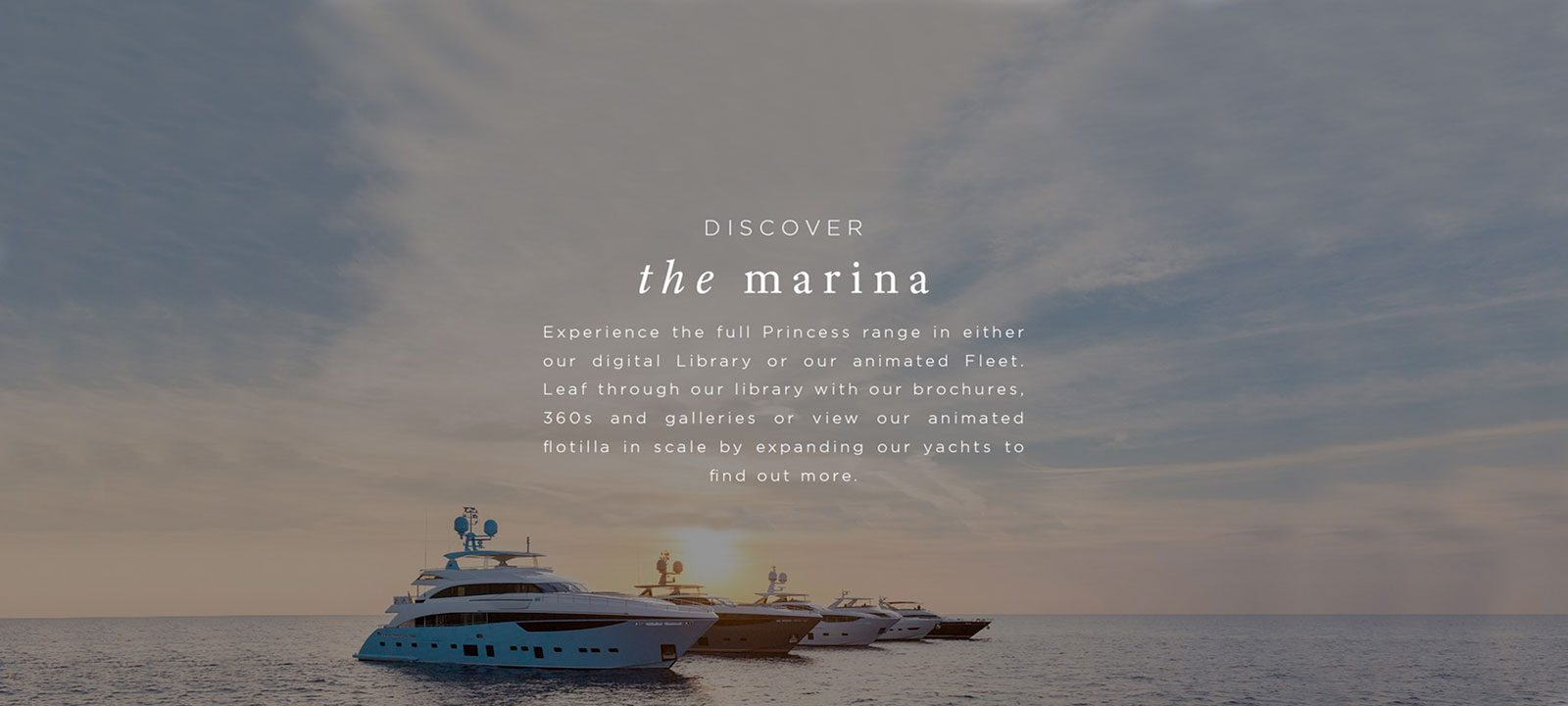 Dicover the marina